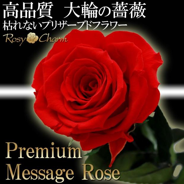 大輪の赤バラ1本ギフト