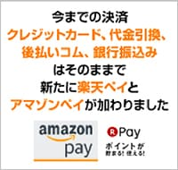 Amazonペイ 楽天ペイについて