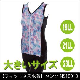 NS1801B