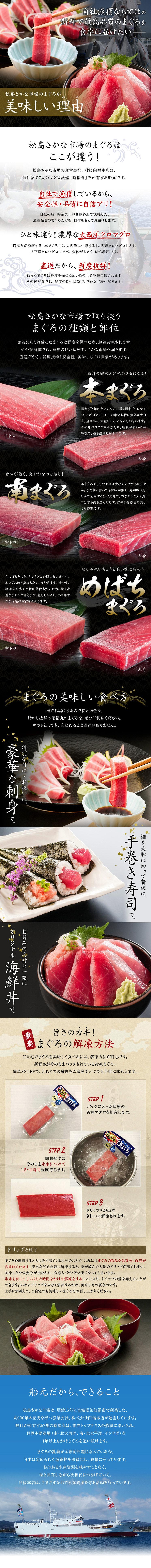 松島さかな市場のまぐろが美味しい理由