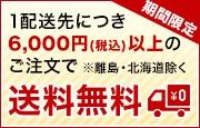 1配送先6,000円以上のご注文で送料無料
