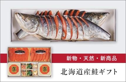 北海道産鮭ギフト