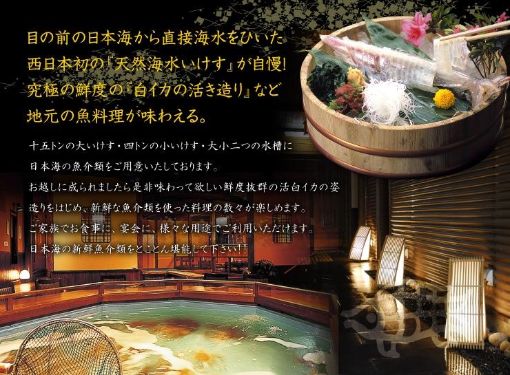 目の前の日本海から直接海水をひいた西日本初の『天然海水いけす』が自慢!             究極の鮮度の『白イカの活き造り』など地元の魚料理が味わえる。             十五トンの大いけす・四トンの小いけす・大小二つの水槽に日本海の魚介類をご用意いたしております。 お越しに成られましたら是非味わって欲しい鮮度抜群の活白イカの姿造りをはじめ、新鮮な魚介類を使った料理の数々が楽しめます。 ご家族でお食事に、宴会に、様々な用途でご利用いただけます。日本海の新鮮魚介類をとことん堪能して下さい!!