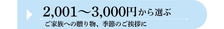 夏ギフト 価格帯 2001円〜3000円