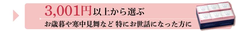 夏ギフト 価格帯 3001円〜