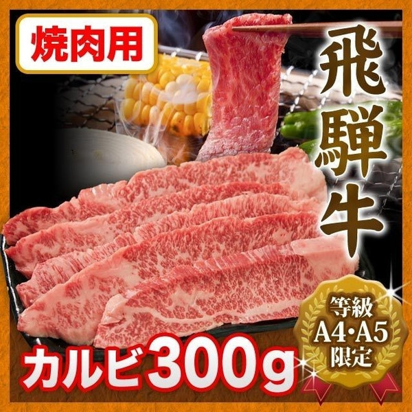 高級ブランド牛 飛騨牛 飛騨豚セット 900g 焼肉用 2018年新春福袋 ハッピーバッグ