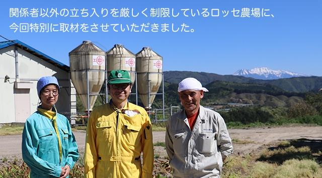 飛騨豚 標高900mで育つ健康な豚肉 飛騨高山産