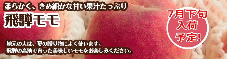 飛騨桃 7月下旬から入荷予定 白鳳 ギフト 飛騨の夏のフルーツ