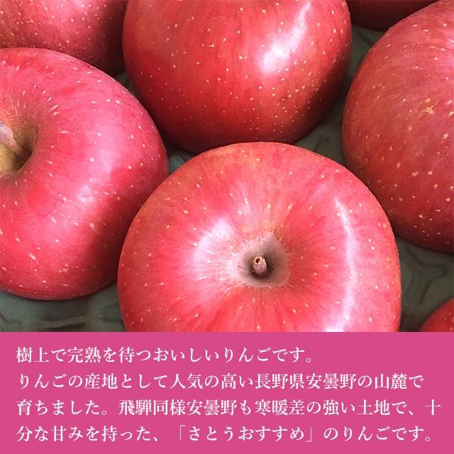 さとうおすすめ 安曇野サンりんご 5kg箱 約18〜20個