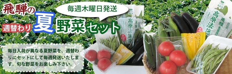 飛騨の野菜 つめあわせ 定期便 トマトや縞ささげ 夏の新鮮野菜