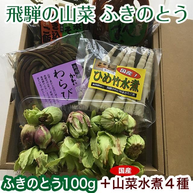 飛騨の山菜 ふきのとう ぜんまい 姫竹 わらび 炊き込みご飯のもと 山菜うどん