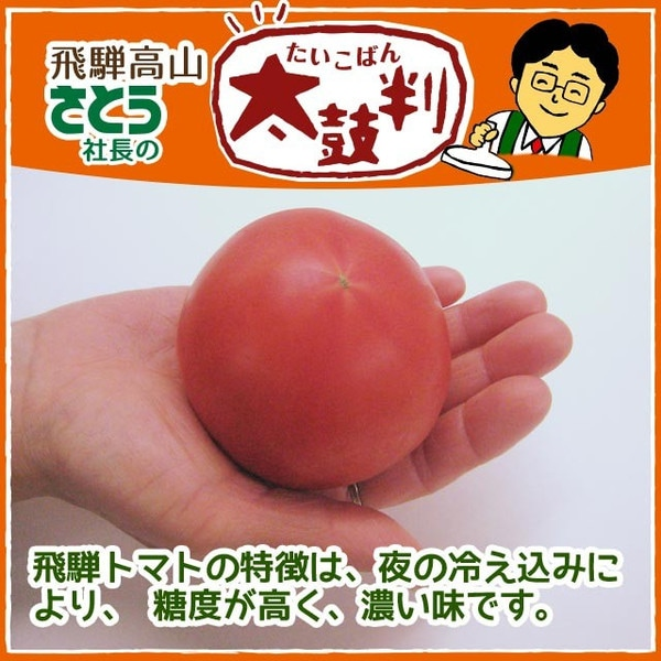 桃太郎トマト 匠味トマト4kg 箱入り 目安個数16〜20個 飛騨高山産 ギフト贈答にも