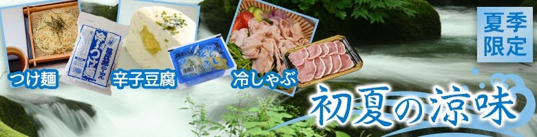 飛騨高山 お土産 特産 夏の涼味 飛騨豚 からし豆腐 甚五郎ひやしつけ麺
