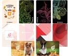 DARTS CARD【PHOENIX】NO.2111