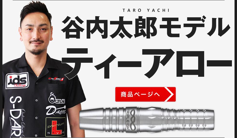 谷内太郎モデル