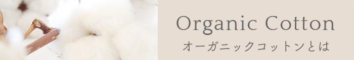 Organic Cotton オーガニックコットンとは
