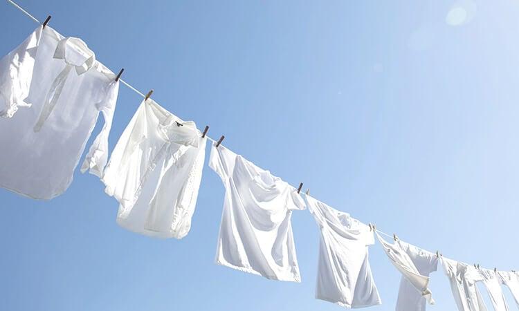 オーガニックコットンの洗濯