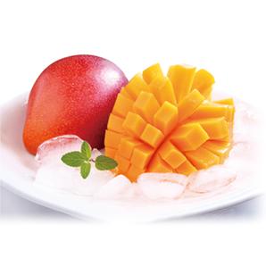 鉢植え栽培マンゴー2玉