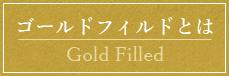 ゴールドフィルドとは