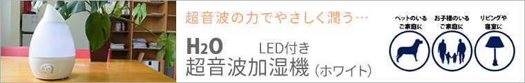 SIS H2O 超音波加湿器 LED付き ホワイト J22-WH