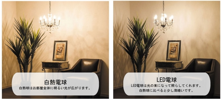 白熱球LED比較