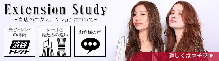 エクステンション study