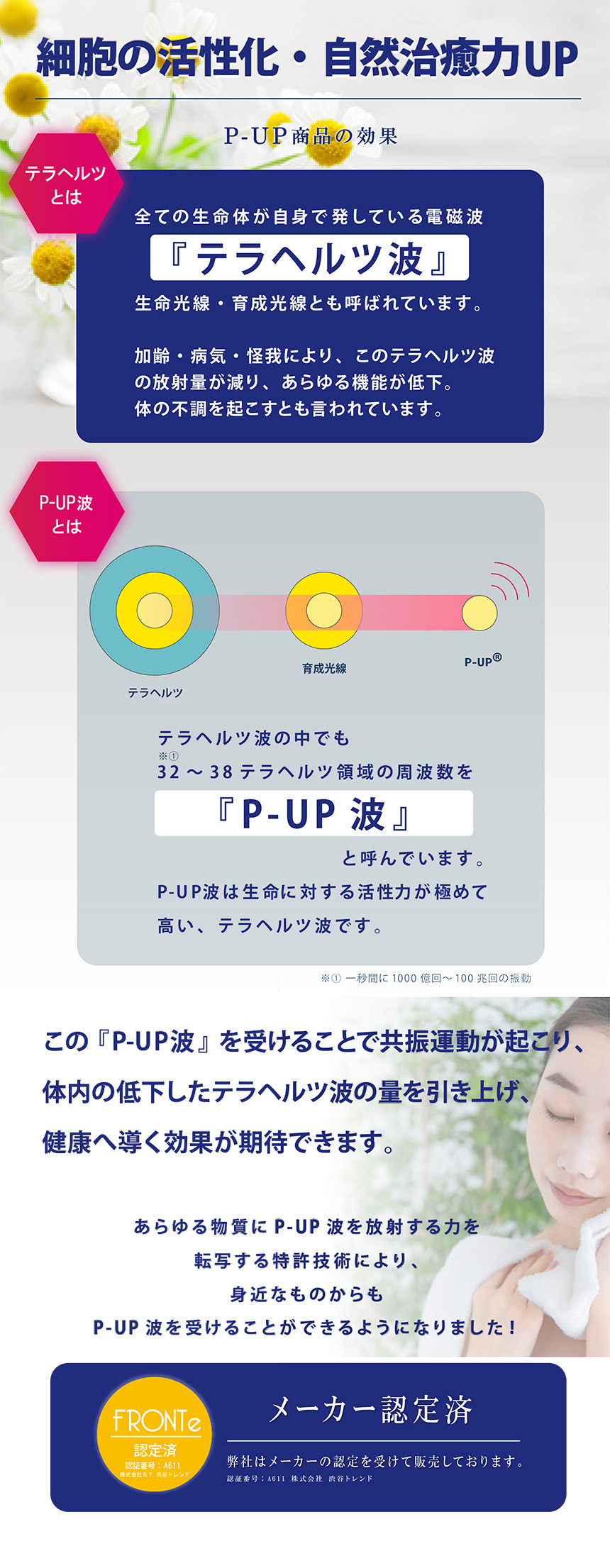 P-UPピーアップ