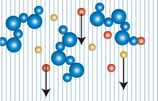 水分子の結合が緩み、不要物が除去される様子