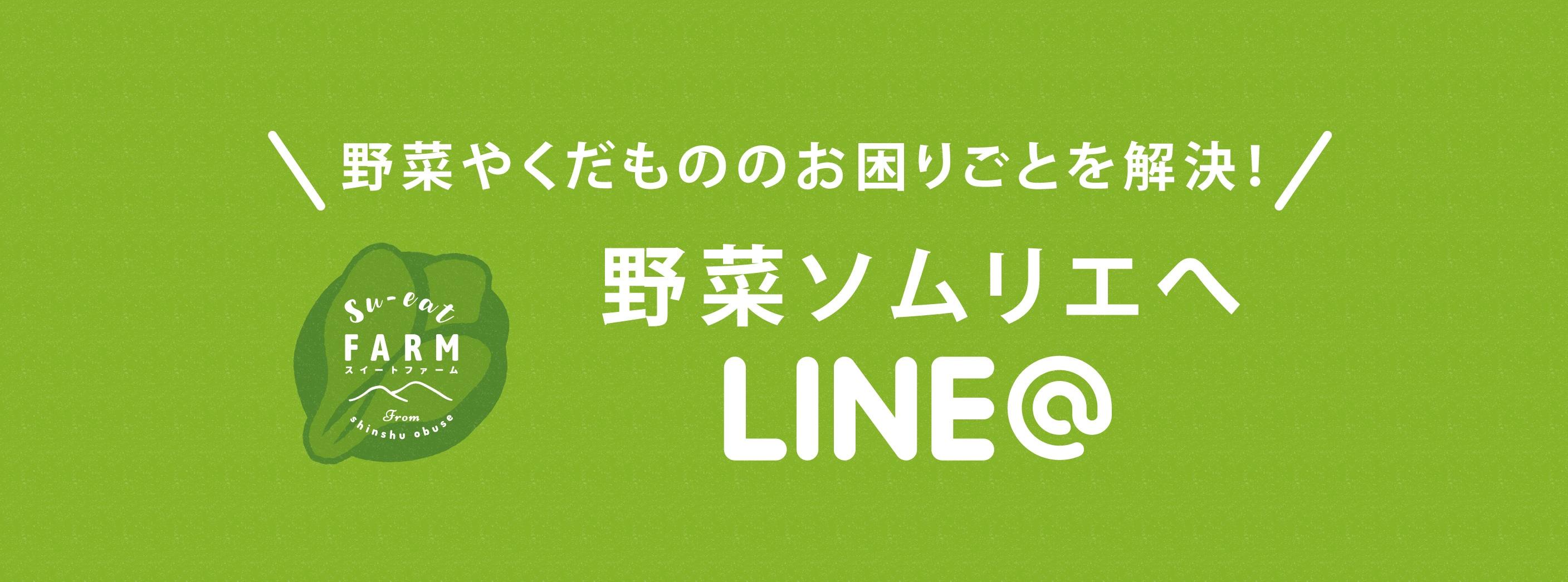 野菜ソムリエにLINEで質問してみよう。