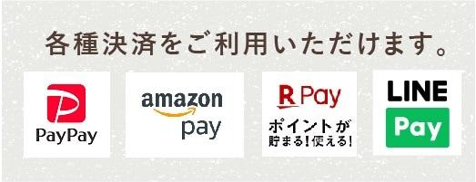 AmazonPay・楽天Pay・LINEPAYがご利用いただけます