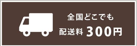 配送料全国どこでも300円