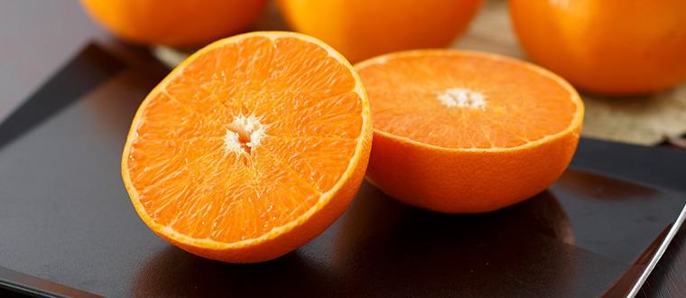 愛媛県産 高級ブランド柑橘