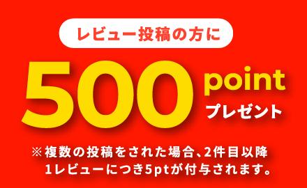 レビュー投稿の方に500ポイントプレゼント!