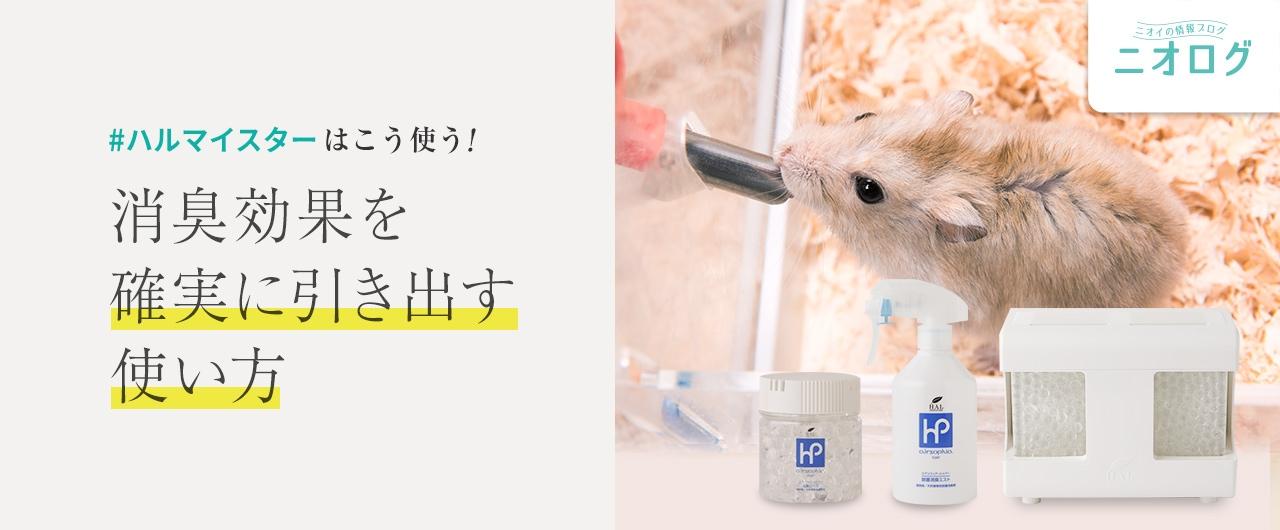 ブログ記事紹介:ハルマイスターはこう使う!消臭効果を確実に引き出す消臭剤の使い方