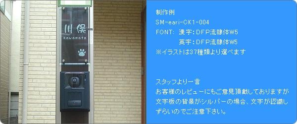 SM-eari取付け