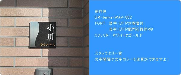 ステンレス+黒御影SM-Tenka取付け