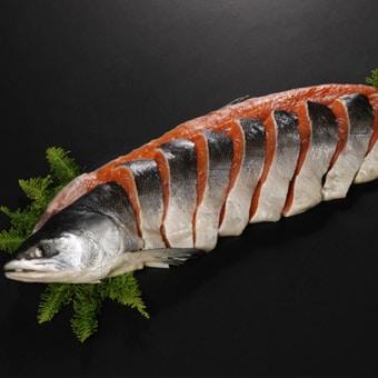 時鮭2.2kg 1本