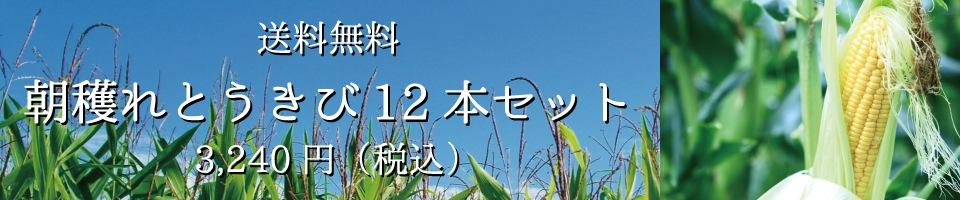東神楽町とうきび12本セット