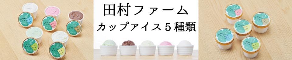 田村ファームアイス5種類セット
