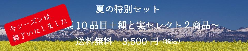 東神楽町種と実特別セット