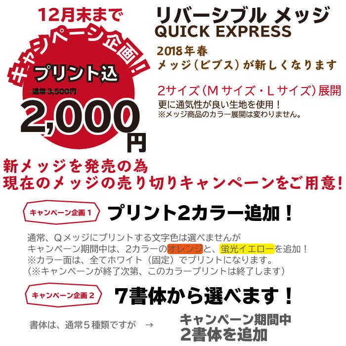 キャンペーン企画 リバーシブルメッジ(ビブス)2000円