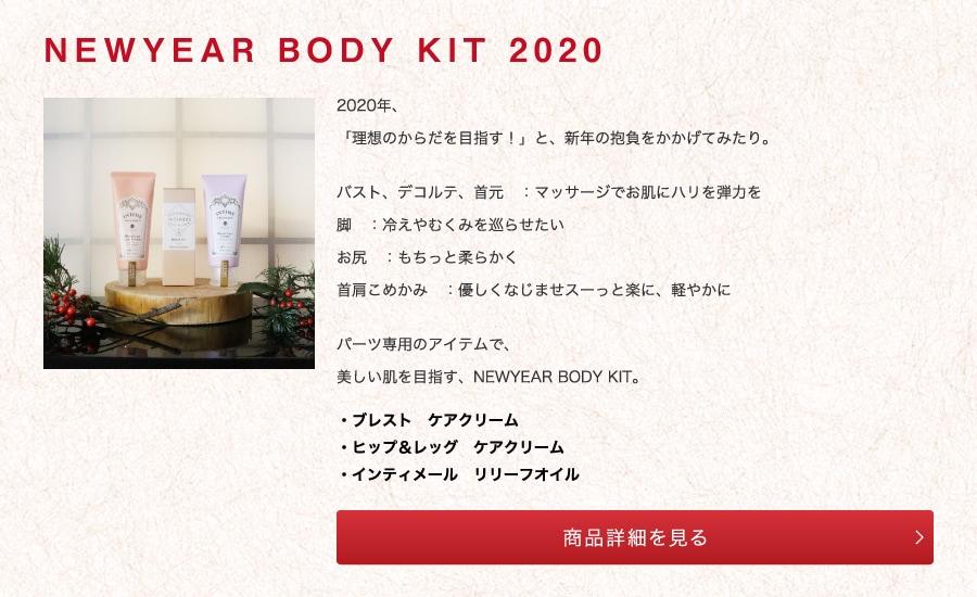NEWYEAR BODY KIT 2020