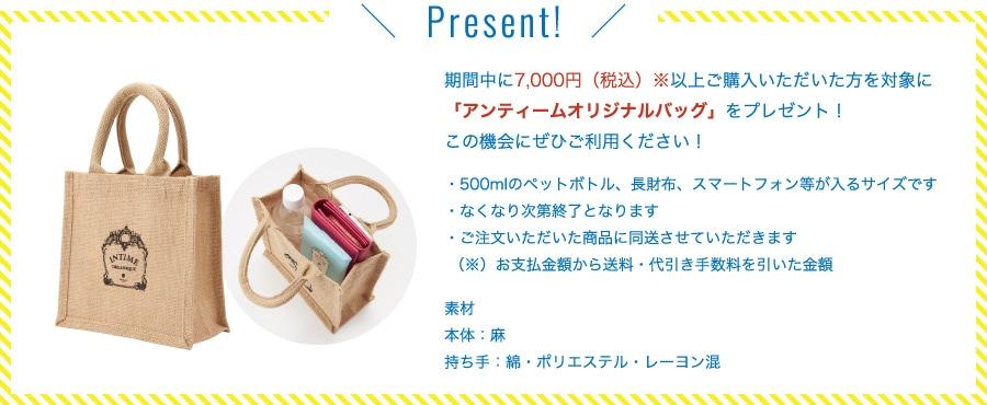 期間中に7,000円(税込)※以上ご購入いただいた方を対象に「アンティームオリジナルバッグ」をプレゼント!