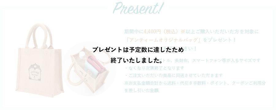 期間中に4,000円(税込)※以上ご購入いただいた方を対象に「アンティームオリジナルバッグ」をプレゼント!