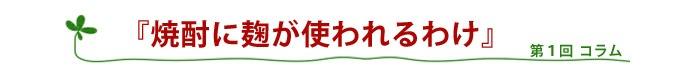 さつま無双、無双蔵 焼酎こぼれ話3