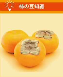 柿の豆知識