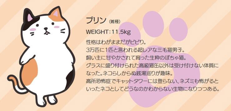 GOSEN ぽちゃ猫 キャラクター3_3 ぽちゃねこ pochaneco
