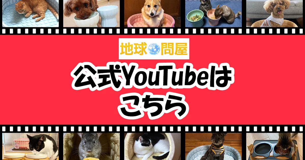 地球問屋youtube