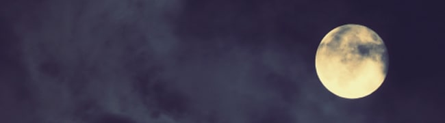 月うさぎ お月様イメージ