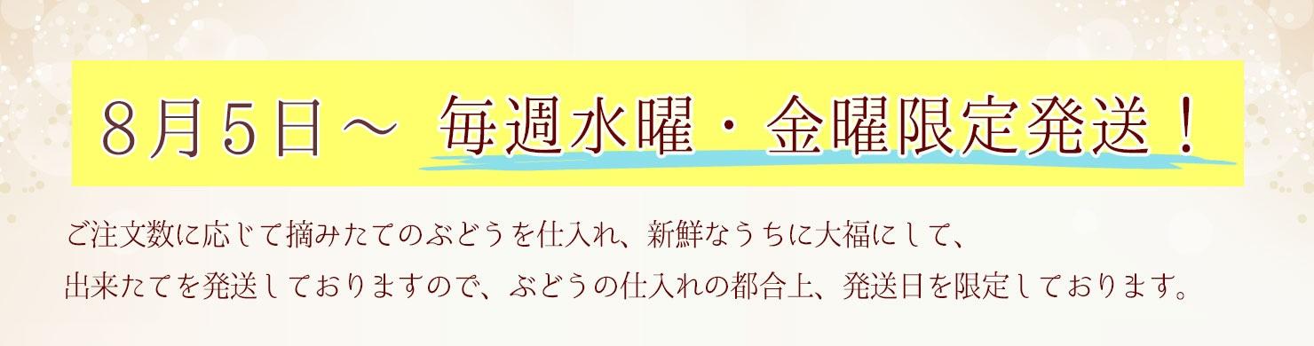 翠香・紫香 発送日